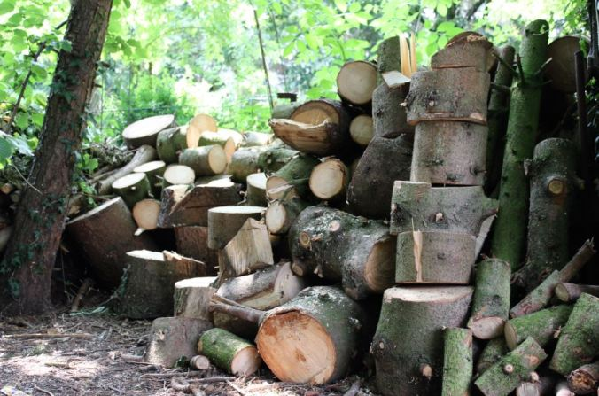 chantalharvey-woodpile-artefiction