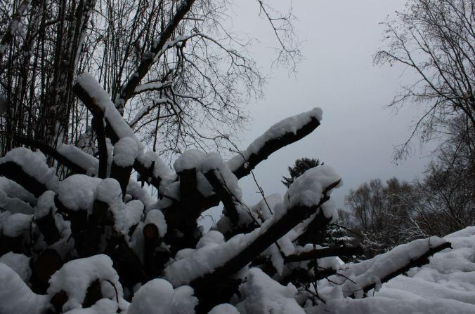 chantalharvey-snow-artefiction